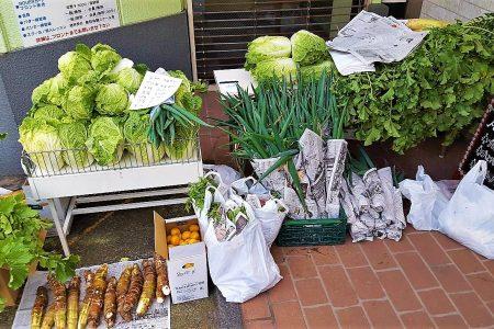 年末無農薬野菜販売!!